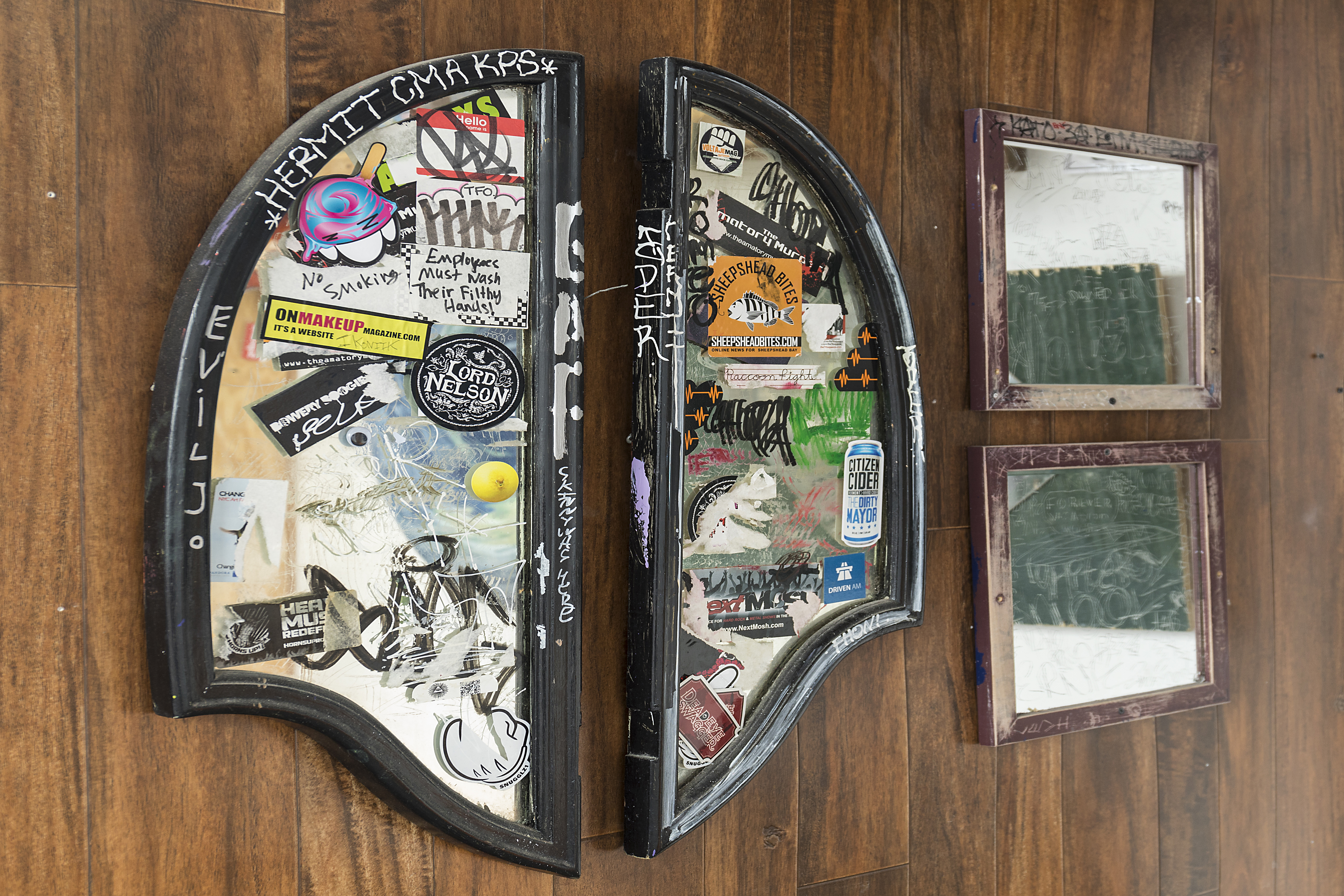 Selections from the Bar Bathroom Mirror Collection / Stolen mirrors, DV, 2015-16